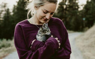 Ter um animal de estimação traz (pelo menos) seis benefícios para a saúde