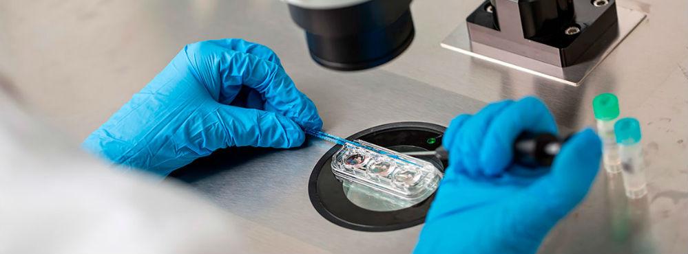 Cancro: análise genómica duplica sobrevida livre de progressão