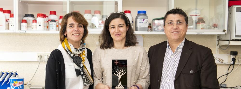 Projeto inovador tenta abrir caminho para a cura da osteoartrose