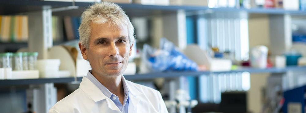 Cientistas testam medicamento que pode revelar-se mais eficaz para tratar gripe