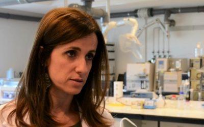 Investigação da UTAD aponta potencial anti-inflamatório em casta de uva portuguesa