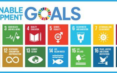 Portugal em 15.ª lugar no Índice dos Objetivos de Desenvolvimento Sustentável na UE