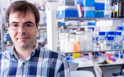 Autismo: Gene 'Gprasp2' é um potencial alvo terapêutico