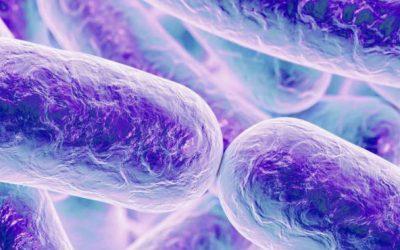 Vancomicina oral impede infecção com C. Diff em doentes de alto risco