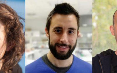 Investigadores criam método inovador para tratamento de lesões agudas da pele