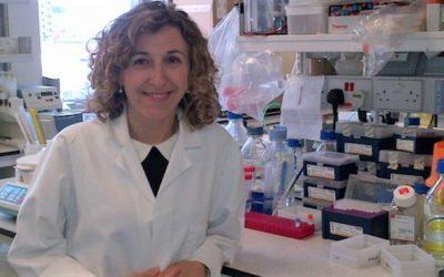 Investigadores identificam nova via para combater melanoma