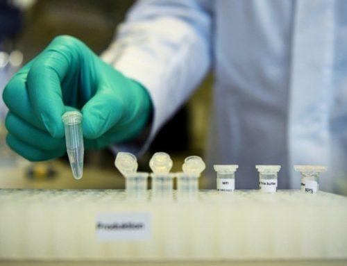 Covid-19. Vacina portuguesa quer estar no mercado em 2022