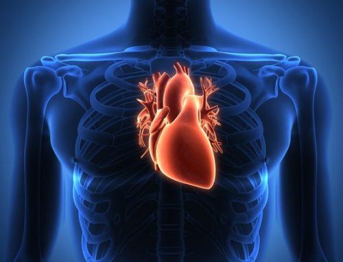 Fritos aumentam o risco de episódios cardiovasculares
