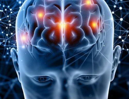 ScienceDaily | Dieta rica em ácido gordo pode ser aliada no combate à esclerose múltipla
