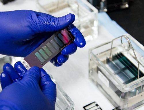 Liga estima que mais de mil cancros estão por diagnosticar