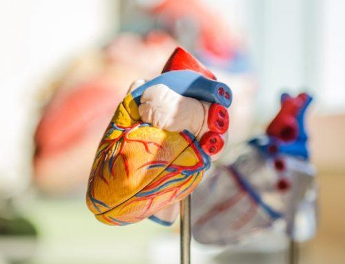 Cardiologistas alertam para a importância de tratar o enfarte agudo do miocárdio