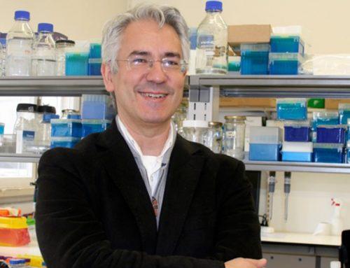 Centro de investigação de Coimbra testa 2 mil fármacos contra o SARS-CoV-2
